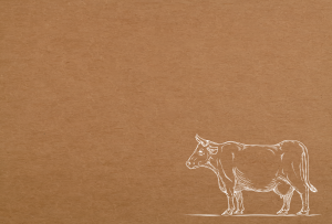 cattle drawing on brown paper backing